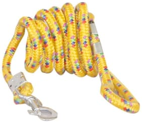 Pethub Standard Dog Rope Leash Large - Yellow