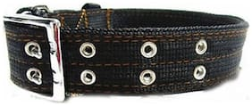 Pets Empire Nylon Fabric Belt Strap Adjustable Collar With Metal Buckle 2 Rows For Heavy Dogs (Color May Vary), 1 PCS