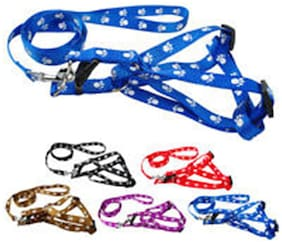 Pets Empire Nylon Dog Pet Harness Leash Set Paw and Bone Print Walking Adjustable Size Medium ,1 Piece Color May Vary