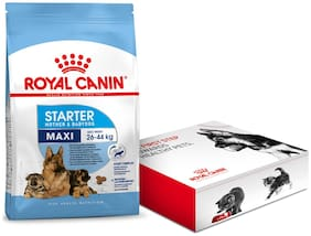 Royal Canin Maxi Starter Dry Dog Food 4Kg with Free Starter Kit