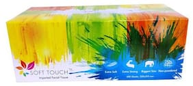 Soft Touch Facial Tissue - 200 Pulls 400 pcs