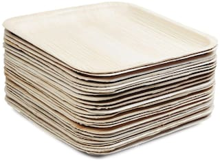 TSP Areca PalmLeaf Shallow Square Disposable Plate for Party 10 x 10 inch (Pack Of 25)