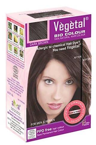 Buy Vegetal Bio Hair Colour 150gm Dark Brown Online At Low Prices