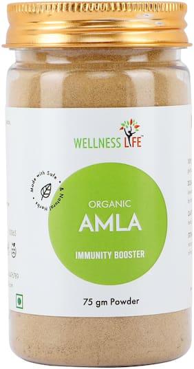 Wellness Life Organic Amla Powder - Immunity Booster 75 g