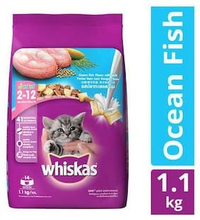 Whiskas Cat Food - Dry  Junior Ocean Fish  For Kittens  2-12 Months 1.1 kg