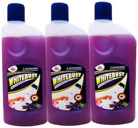 Whitebust Floor cleaner Lavender 500 ml each Pack of 3