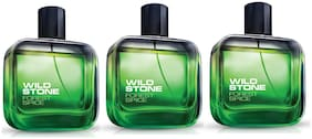 Wild Stone Forest Spice EDP 100ml (Pack of 3)