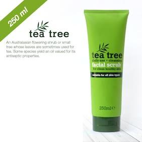 Xpel Marketing Tea Tree Facial Scrub for oil control, dead skin cells 250 ml - For All Skin Types - SLS & Paraben Free