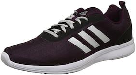 Adidas Men Purple Running Shoes