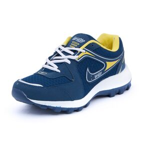 Asian Mens Blue Sports Shoes