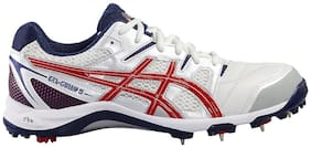 Asics Men Cricket Shoes ( White )