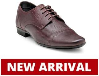 Franco Leone Men Purple Formal Shoes