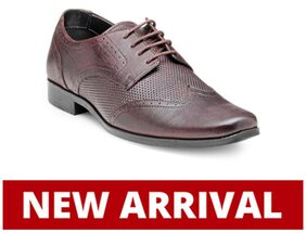 Franco Leone Men Purple Formal Shoes