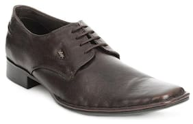 Lee Cooper Brown Leather Formal Shoes (Euro Size-43)