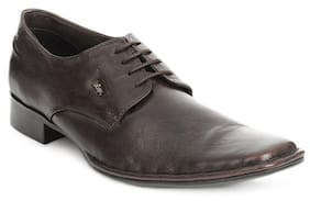 Lee Cooper Brown Formal Shoes (Euro Size-40)