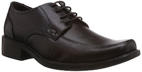 Lee Cooper Men Brown Formal Shoes - Yt-lc9230-brown-p1