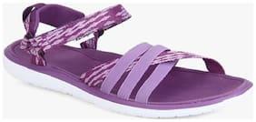 Lee cooper Purple Sandals