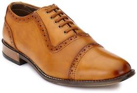 Prolific Men Tan Brogues Formal Shoes