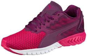 Puma Women's IGNITE Dual Mesh Wn's Purple Running Shoes
