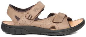 Scholl Men Beige Sandals
