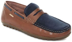 Men Brown;Navy Blue  Loafers