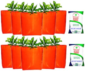 Grow Basket 2 Organic Vegetable Seed Packets with 10 Grow Bags