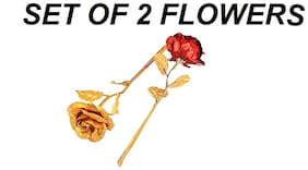 25cm big 24k Gold Plated Golden Foil Red Rose And Gold Flower Flower With Unique Gift Box  For Valentines Day (SET OF 2)