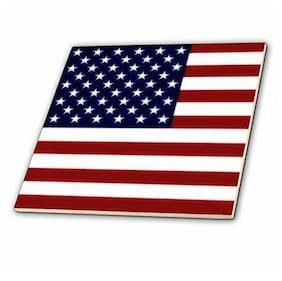 3dRose ct_37607_3 Unites States American Flag-Ceramic Tile, 8-Inch