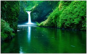 5 Ace Waterfall scenery Sticker Poster For Room
