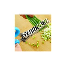5 Blade Vegetable cutter Stainless Steel Herbs Scissor