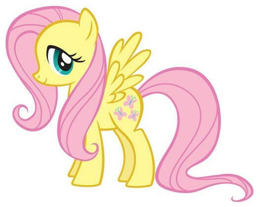 6.5   9.5  My little pony fluttershy wall sticker glossy cut out border characte by Jhakaas Retail