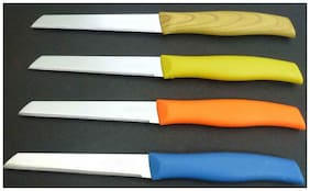 Kitchen4U Stainless steel Assorted Knives ( Set of 4 )