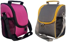 Aafeen Waterproof Polyester Office Lunch/Tiffin Bags for Men's and Women' Multicolor
