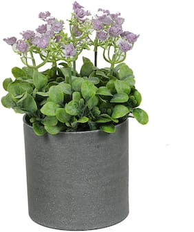 Aapno Rajasthan Purple Flower Artificial Plant With White ABS Plastic Pot