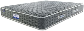 AMORE INTERNATIONAL 4.5 inch Foam Double Mattress