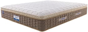 AMORE INTERNATIONAL 6 inch HR Foam Single Mattress
