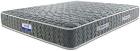 AMORE INTERNATIONAL 4.5 inch Foam Queen Mattress