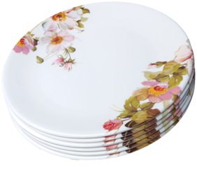 ANTC Dinner Plate Set Of 6 PCS. SIZE 10.5 IN