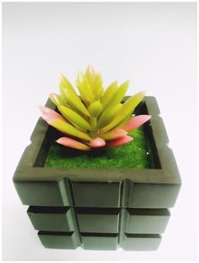 Artificial Cactus Multicolor Bonsai Plastic