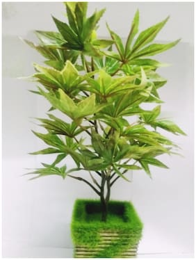 Artificial Maple Bonsai Plants with pot