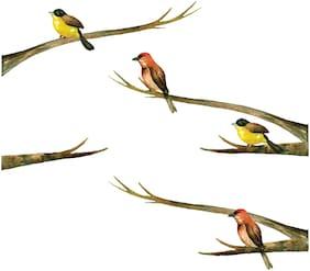 Asian Paints Wall Ons Nature Bird Branch Wall Sticker