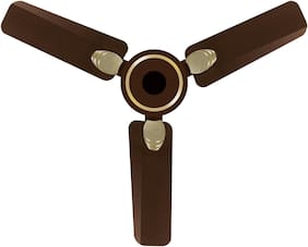 Atomberg Efficio+ 900mm Ceiling Fan with Remote Control (Earth Brown)