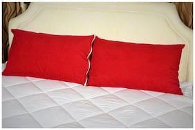AVI Poly cotton Regular Pillow protector