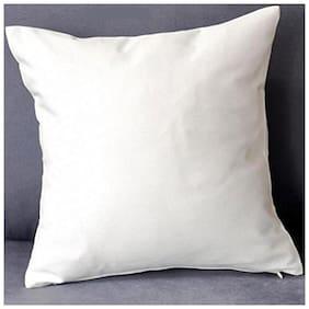 AVI 2 Piece Microfibre Pillow For 5 Star Hotel Feel, White (17*27in)