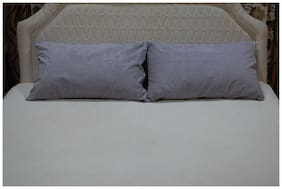 AVI Poly cotton Extra large Pillow protector