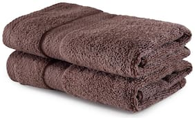 BIANCA 500 GSM Cotton Hand Towel ( Pack of 2 , Brown )