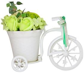 Bird In Blue Bi-Cycle Rose Flower Basket (Lime Green)
