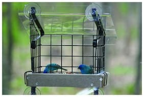 """Birds Choice SNWMKIT Recycled 11"""" x 10"""" Platform, Top & Cage Kit"""