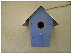 BLUE WOODEN BIRD HOUSE KENTUCKY WILDCATS LICENSE PLATE ROOF PERCH CHAIN NEW