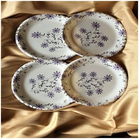 BlueLiner Int. Multicolored Serving  Plate ( Set Of 6 )